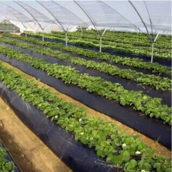 PLASTIC FOR AGRICULTURE
